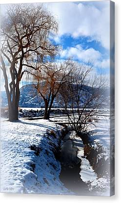 Wintercreek 2/8/2014  Canvas Print by Guy Hoffman