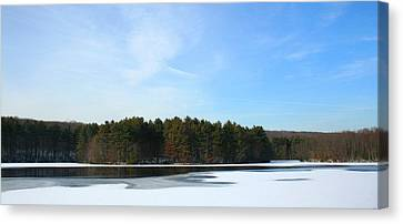Wintergreen Winterfrost Canvas Print by Stephen Melcher