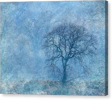Wintering Oak Canvas Print by Angie Vogel