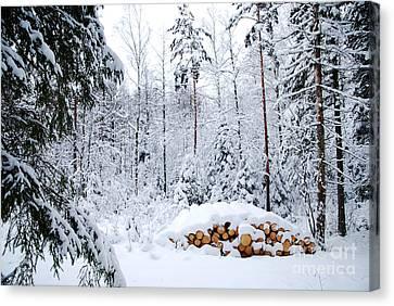 Canvas Print featuring the photograph Winterland by Kennerth and Birgitta Kullman