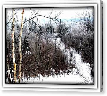 Winterlude Canvas Print
