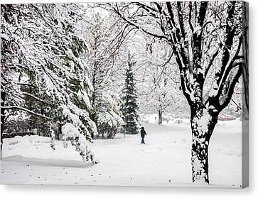 Winter's Covering Canvas Print