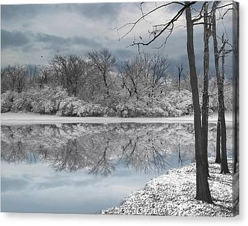 Winters Delight 6 - Limited Edition Canvas Print