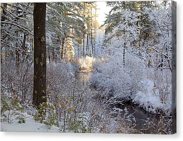 Canvas Print featuring the photograph Winter's First Light by Larry Landolfi