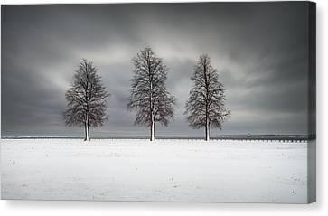 Winter's Halo Canvas Print