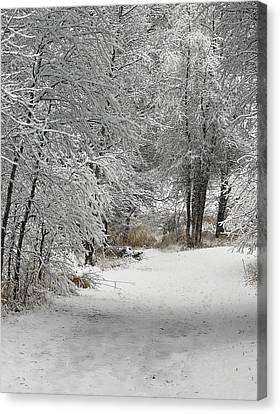 Canvas Print featuring the photograph Winter's Kiss by Don Schwartz