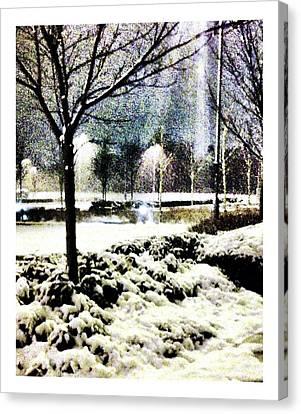 Winters Light Canvas Print by Andrew Allsopp