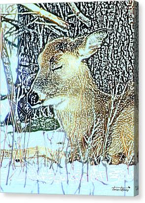 Winter's Nap Canvas Print by Torie Tiffany