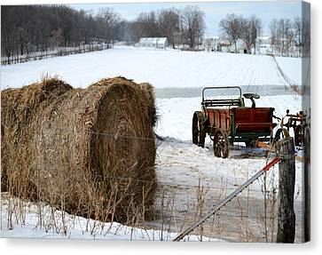 Canvas Print featuring the photograph Winter's Rest by Linda Mishler