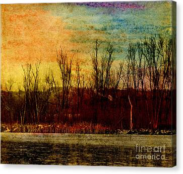 Winter's Shore Canvas Print by R Kyllo
