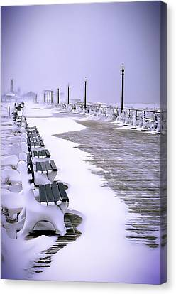 Winter's Silence Canvas Print by William Walker