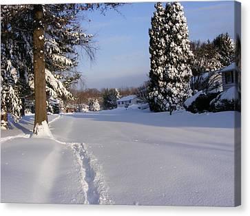 Winters Snow Canvas Print