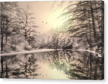 Winter's Soul Canvas Print by Lori Deiter