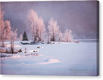 Kim Klassen Texture Canvas Print - Winter's Splendor #3 - Pastels by Dustin Abbott