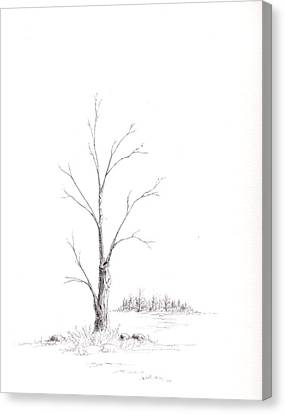 Winter's Tree Canvas Print by Steven Powers SMP