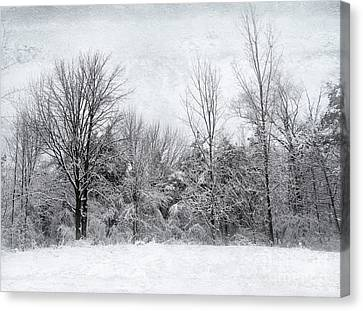 Canvas Print featuring the photograph Winter's Wonder by Kathi Mirto