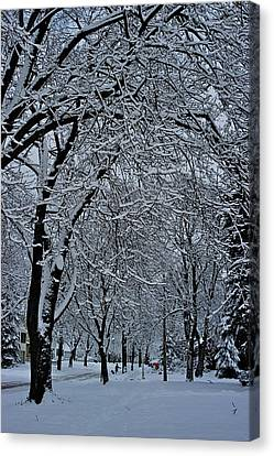 Winter's Work Canvas Print by Joseph Yarbrough