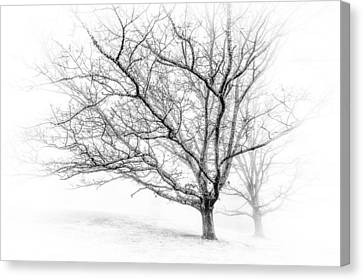 Winter's Work Canvas Print