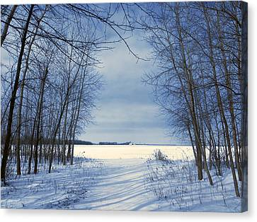 Wintertime At Sheldon Marsh Canvas Print