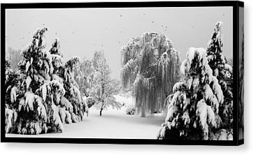 Wintery Scenes 1 Canvas Print by David Lester