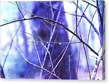 Wintry Canvas Print by Judi Bagwell