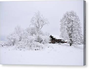 Wintry Landscape Canvas Print by Conny Sjostrom
