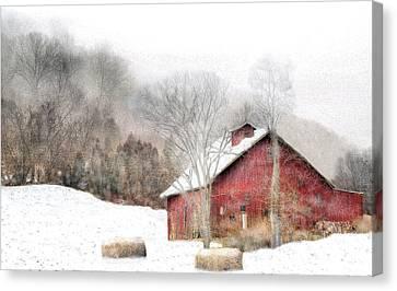 Wintry Mix Canvas Print