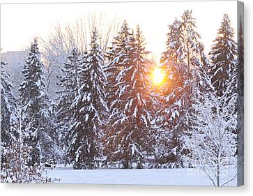 Wintry Sunset Canvas Print by Larry Ricker