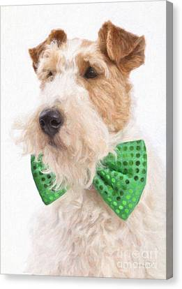 Wire Fox Terrier With Bowtie Canvas Print