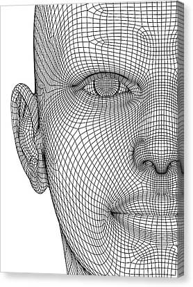 Wireframe Head Canvas Print by Alfred Pasieka