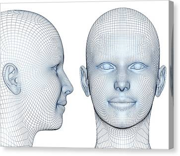 Wireframe Heads Canvas Print by Alfred Pasieka