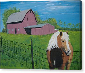 Wisconsin Barn Canvas Print by Norm Starks