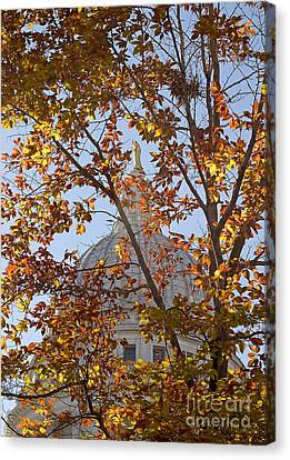 Wisconsin Capitol Canvas Print by Steven Ralser