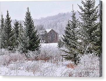 Wisconsin Frost Canvas Print by Trey Foerster