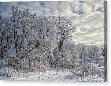 Wisconsin Winter Canvas Print by Joan Carroll