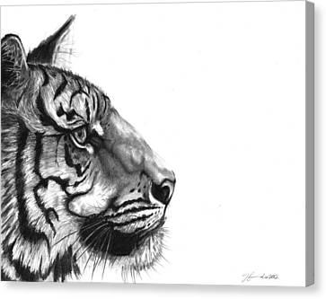 Wise One Canvas Print by J Ferwerda