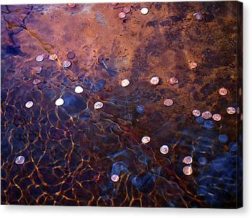 Canvas Print featuring the photograph Wishes by Rona Black