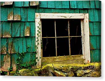 Wishes Through The Window Canvas Print by Michael Eingle