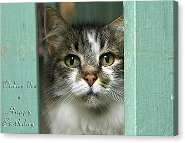 Wishing You A Happy Birthday Canvas Print