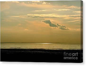 Wispy Sunset Canvas Print
