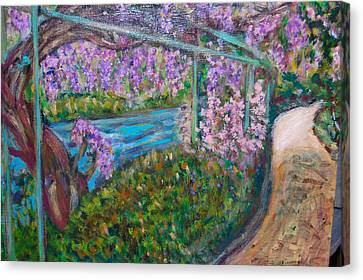 Wisteria Canvas Print by Carolyn Donnell
