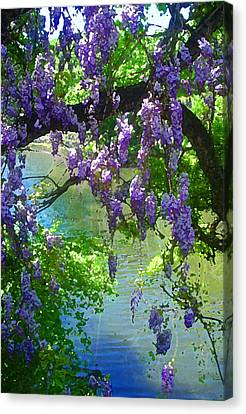 Wisteria Over Turtle Creek Canvas Print by Robert J Sadler