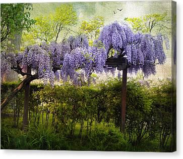 Wisteria Trellis Canvas Print