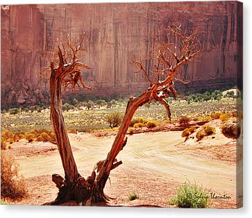 Canvas Print featuring the photograph Witch Way Did They Go? by Sylvia Thornton