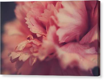 With A Fluttering Heart Canvas Print