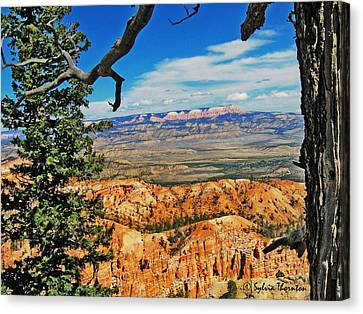 Canvas Print featuring the photograph With God's Paintbrush by Sylvia Thornton