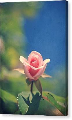 With Love Always Canvas Print by Laurie Search