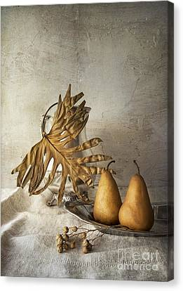 With Pears Canvas Print by Elena Nosyreva