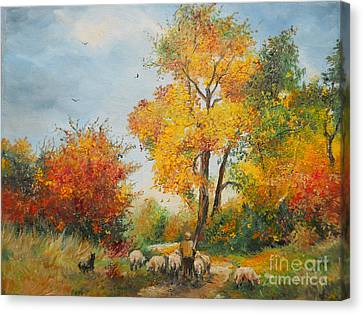 With Sheep On Pasture  Canvas Print by Sorin Apostolescu