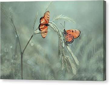 Pairs Canvas Print - With You by Edy Pamungkas
